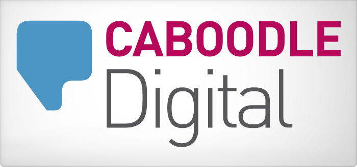 Who are Caboodle Digital web design and marketing
